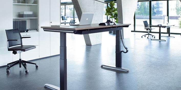 Elektrischer Höhenverstellbarer Schreibtisch |Hund Möbelwerke